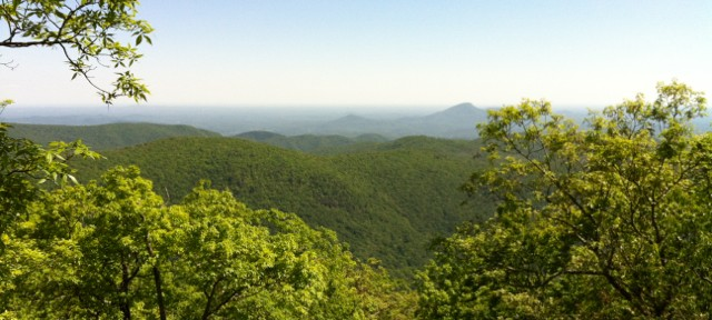 Green Mountains of Georgia - Appalachian Trail